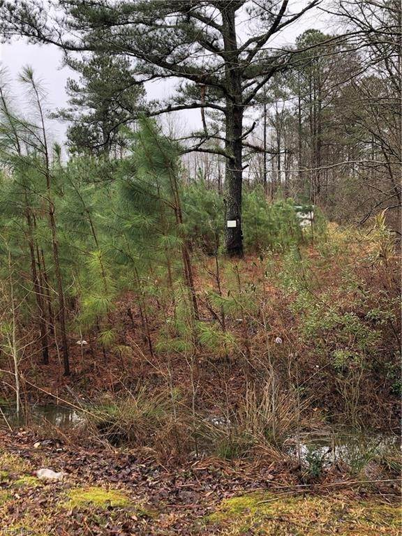 Land & Farms for Sale at Lot 1 Bush Lane Gates, North Carolina 27937 United States